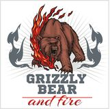 Grizzly bear and fire, emblem elements - vector Stock Photo