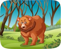 A grizzly bear in forest. Illustration royalty free illustration