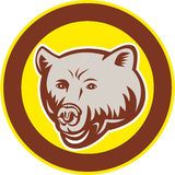 Grizzly Bear Head Circle Retro Stock Images