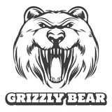 Grizzly bear head logo Stock Images