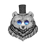 Grizzly bear Hipster style animal Image for tattoo, logo, emblem, badge design Royalty Free Stock Images