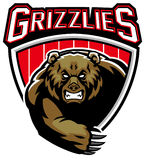 Grizzly bear mascot. Vector of grizzly bear mascot royalty free illustration