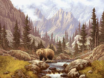 Grizzly Bear in the Rocky Mountains royalty free illustration