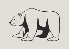 Grizzly bear. Vector Illustration of grizzly bear Royalty Free Stock Photography