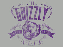 The Grizzly bear. Vector illustration ideal for printing on apparel clothes Stock Images