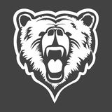 Grizzly head vector Stock Image