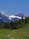 grizzly lake medicine to trail Στοκ φωτογραφία με δικαίωμα ελεύθερης χρήσης