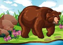 Grizzly niedźwiedź stoi rzeką royalty ilustracja