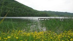 Grliste sjön är den härliga sjön i Serbien Fotografering för Bildbyråer