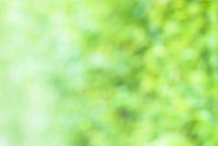 Grön bakgrund för Blur Arkivbilder