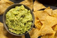 Grön hemlagad Guacamole med tortillachiper Arkivfoton