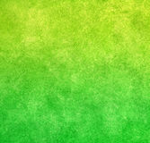 grön limefruktmålarfärgtextur Royaltyfri Bild