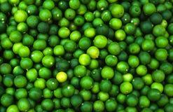grön limefruktmodell Arkivfoton