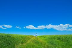 grön person för 3 fält Arkivfoto