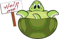 grön sköldpadda Royaltyfria Bilder