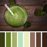 Grön smoothiepalett Arkivfoto