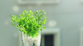 Grön växt i en vas med grafiska hjärtor Royaltyfri Fotografi