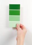 gröna målarfärgprovkartor Fotografering för Bildbyråer