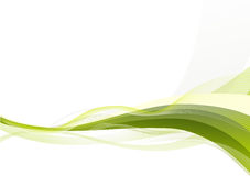 gröna waves för abstrakt bakgrund Arkivbilder