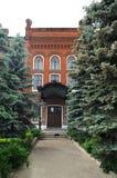 Gränd med högväxta pälsträd som leder till det gamla huset för röd tegelsten i Yele Royaltyfri Foto