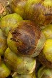 Grüne Kokosnüsse Indische Art Lizenzfreie Stockbilder