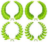 Grüne Lorbeer Wreaths Stockfoto
