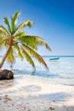 Grüne Palmen auf weißem Sandstrand unter blauem Himmel Lizenzfreies Stockbild