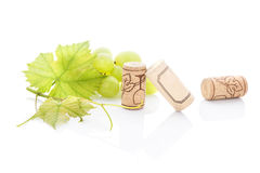 Grüne Trauben und Weinkorken Stockbild