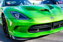 Grüne und schwarze Viper Stockfotos