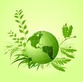 Grünen Sie ökologischen mit Blumenhintergrund Stockbilder