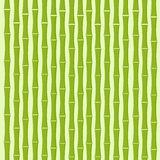 Grüner Bambusbaum-Hintergrund-flacher Vektor Stockbilder