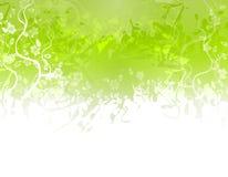 Grüner Blumen-Beschaffenheits-Rand Lizenzfreies Stockfoto