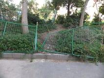 Grüner Drahtzaun Stockfoto