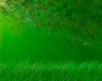 Grüner Frühlingshintergrund Stockfotos