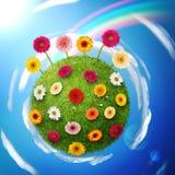 Grüner kleiner Planet Lizenzfreie Stockfotos