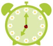 Grüner netter Wecker mit Gänseblümchenblume Stockfoto