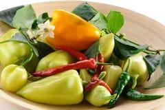 Grüner Pfeffer und Paprika mit hölzerner Platte auf Weiß Stockfotografie