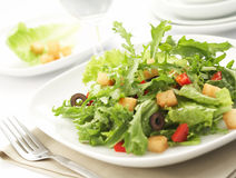 Grüner Salat Stockbild