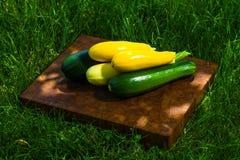 Grüner und gelber Eierkürbis Lizenzfreie Stockfotos
