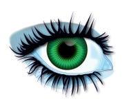 Grünes Auge Stockfotografie