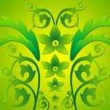 Grünes Blatt Stockfotografie
