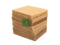 Grünes Blatt und Stapel der Pappe Stockfotografie