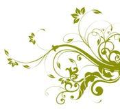 Grünes Blumen- und Rebemuster Stockbild