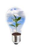 Grünes Energiekonzept Lizenzfreies Stockbild