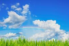 Grünes Gras über einem Hintergrund und einem Regenbogen des blauen Himmels Stockbilder