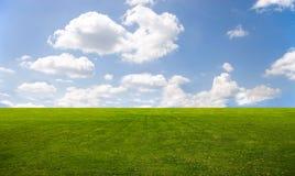 Grünes Gras und blauer Himmel Lizenzfreie Stockbilder