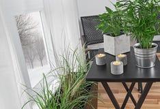 Grünpflanzen in einem Raum und Winterlandschaft hinter dem Fenster Stockfotos