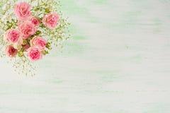Gräns - rosa vita blommor för rosor och på ljus - grön bakgrund Royaltyfri Bild