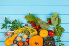 grönsak för tomater för bakgrundszucchinier ny Nya peppar, tomater, basilika, på blå träbakgrund Collage av nya grönsaker Utrymme Royaltyfri Fotografi