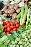 Grönsak i nytt Royaltyfria Foton